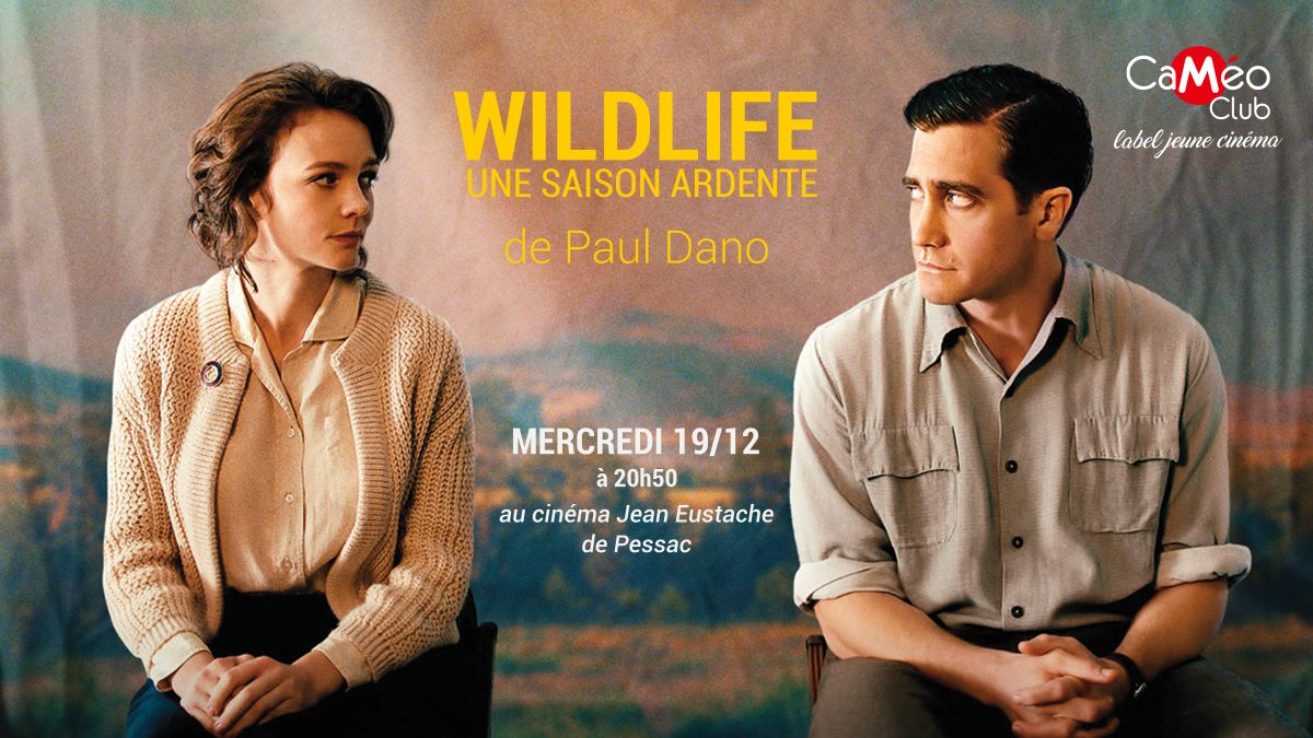 CaMéo-Club à Pessac - Wildlife de Paul Dano