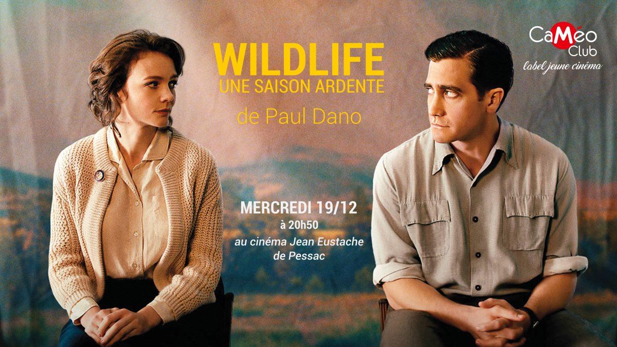 CaMéo-Club à Pessac - Wildlife de Paul Dano